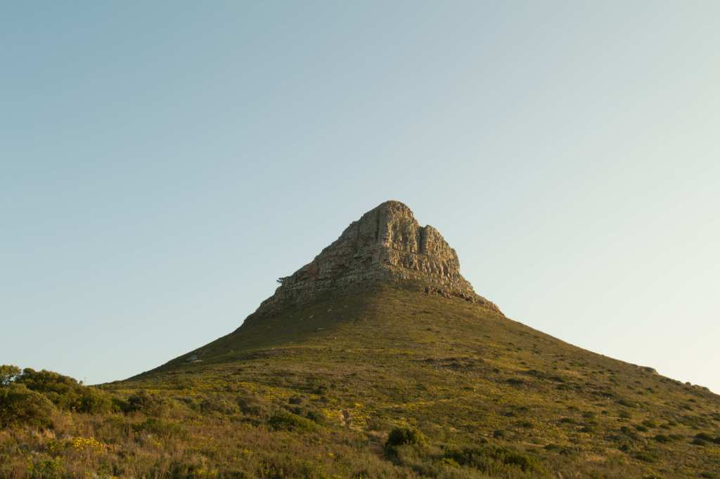 View up Lions head